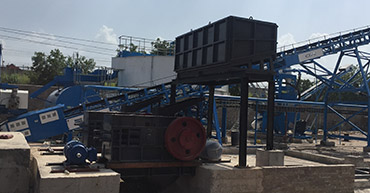 double roll crusher manufacturer in delhi
